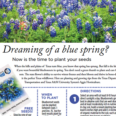 Bluebonnet magazine layout GHEBER